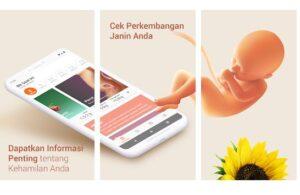 Aplikasi Panduan program Ibu Hamil
